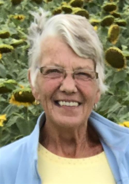 Ann M Cleaver
